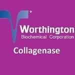 Collagenase
