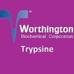 Trypsine